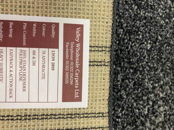 Lyon Carpet